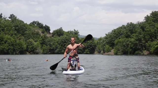 professional water sports athlete kayaking with his dog - oar stock videos & royalty-free footage