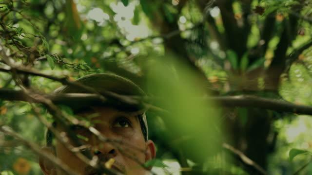 プロの野生動物の写真 - 写真家点の映像素材/bロール