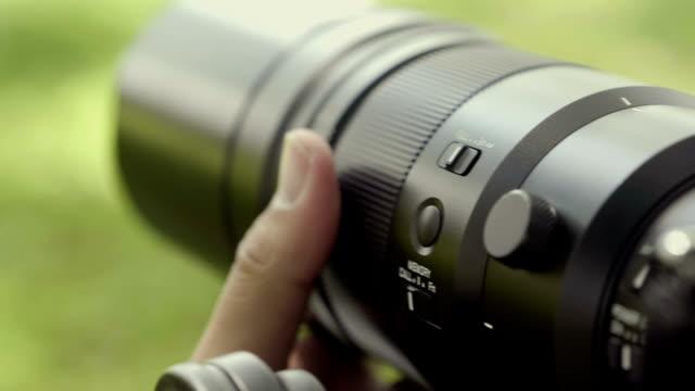 vídeos de stock, filmes e b-roll de fotografia da vida selvagem profissional - fotógrafo