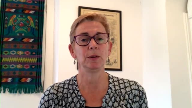 professor helen ward saying it is not surprising that immunity to covid19 wanes over time due to its similarity with other coronaviruses - surprise stock videos & royalty-free footage