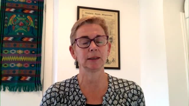 """professor helen ward saying research shows that immunity to covid-19 """"wanes over time"""" - time stock videos & royalty-free footage"""