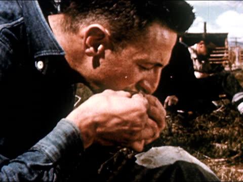 vídeos de stock, filmes e b-roll de 1950 profile of cowboy eating chicken / gunnison, colorado / audio - gunnison