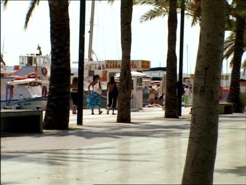ms, ds, promenade at harbor, ibiza, spain - fächerpalme stock-videos und b-roll-filmmaterial