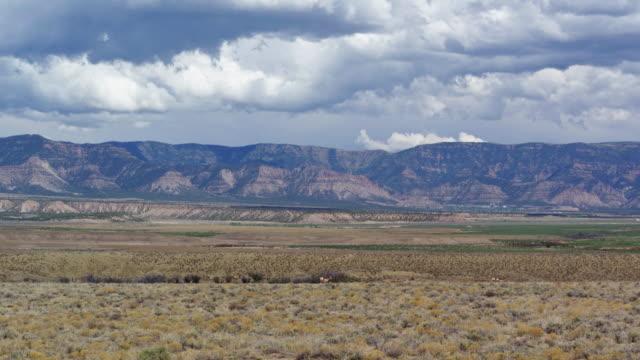ユタ州よもぎ - ドローン ショットでプロングホーン アンテロープ - プロングホーン点の映像素材/bロール
