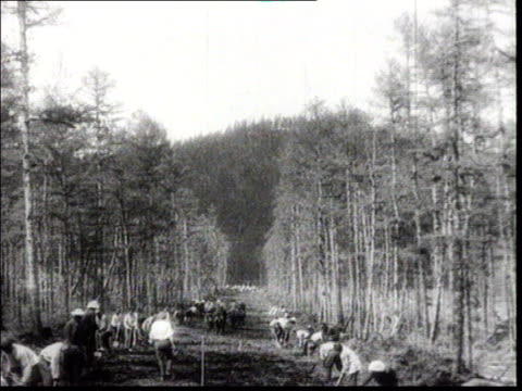 stockvideo's en b-roll-footage met propaganda documentary film about the construction of the bam railway 1937 hard labour camp / gulag in siberia men carrying wood logs iron bars... - 1937