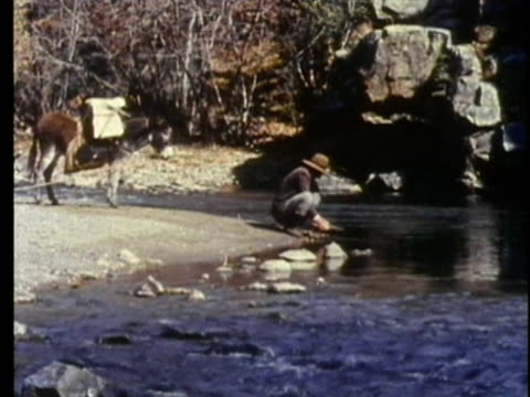 1962 REENACTMENT WS Prospector panning for gold on river in 19th century Mississippi
