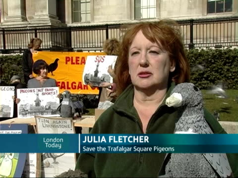 Protest held in Trafalgar Square over feeding pigeons ban ENGLAND London Trafalgar Square EXT Julia Fletcher interview SOT