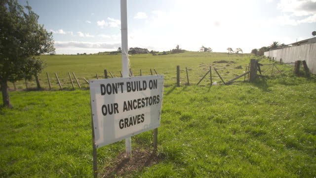 protest signs against housing development site at otuataua stonefields reserve - māori people stock videos & royalty-free footage