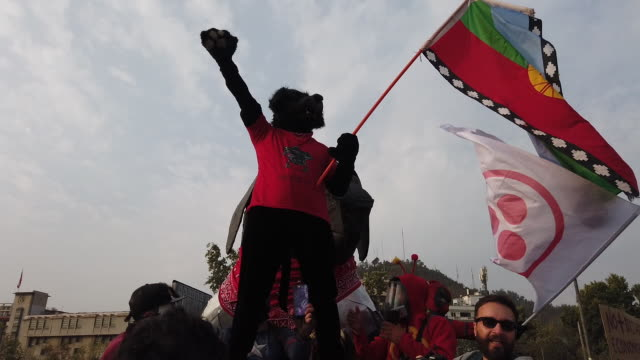 stockvideo's en b-roll-footage met a protester dressed up black copkiller the iconic chilean dog is led by demonstrators during a protest against president sebastián piñera at plaza on... - chile