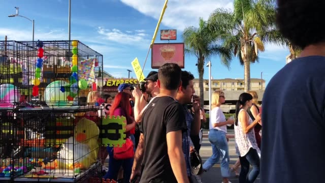 vídeos y material grabado en eventos de stock de protesters demonstrate and march at the 'families belong together march' against the separation of children of immigrants from their families on june... - pancarta