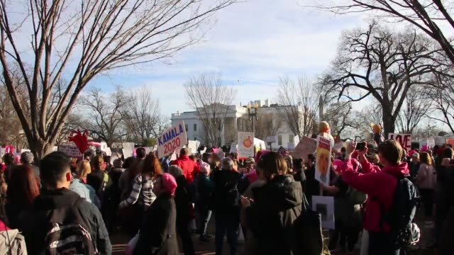protesters hold trump signs at lafayette square in front of white house at women's march in washington dc - lafayette square washington dc stock videos & royalty-free footage