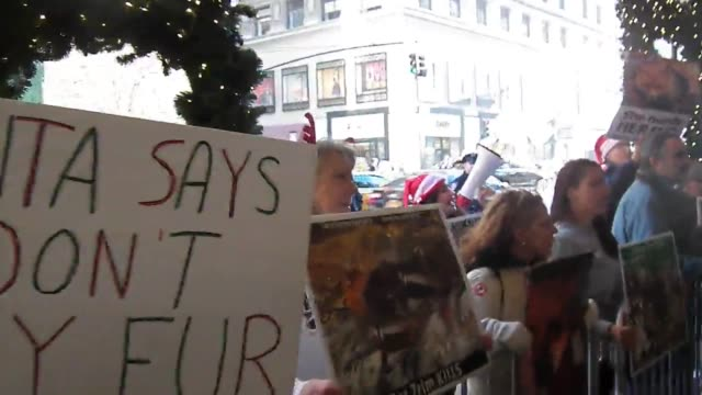protesters marched from times square to lord and taylor where they held a protest outside of the store from 1pm to 3pm video of the store the rally... - animal hair stock videos & royalty-free footage