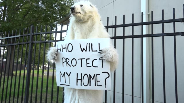 Protesters outside Hofstra University prior to the presidential debate / Animal activist wearing polar bear costume holding sign that reads Who will...