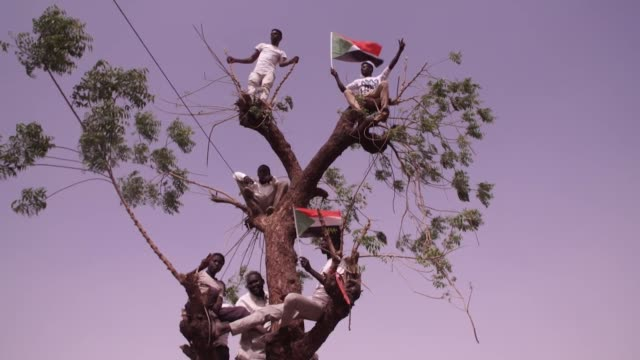 Protesters sat in tree as they fight for a civilian Government after President Omar alBashir was forced from power Khartoum Sudan