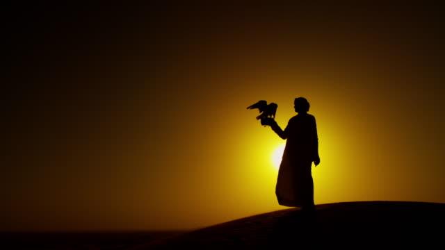 proud arab wearing dishdasha with his trained falcon - saudi arabia stock videos & royalty-free footage