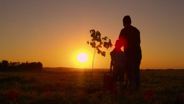 ds proud father and son enjoying the view of the sunset - hugging tree stock videos and b-roll footage