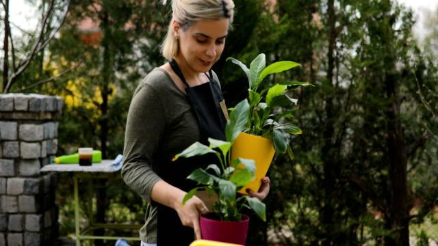 vídeos de stock e filmes b-roll de proud female gardener walk with plants after potting - colocar planta em vaso