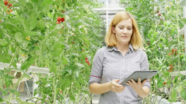 WS Proud female gardener with a tablet walking through a greenhouse