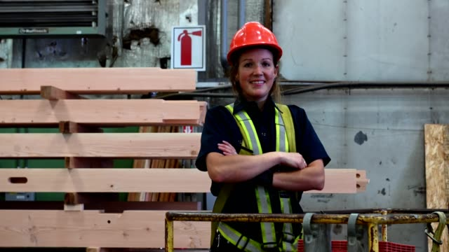 proud woman working in industry - timber yard stock videos & royalty-free footage