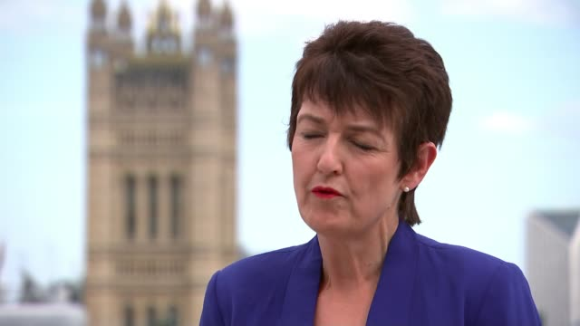 prue leith to advise government review into hospital food after listeria deaths england london westminster ext jo churchill mp interview sot - prudence leith stock videos & royalty-free footage