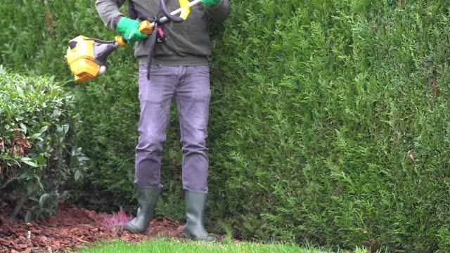 pruning hedge - annick vanderschelden stock videos & royalty-free footage