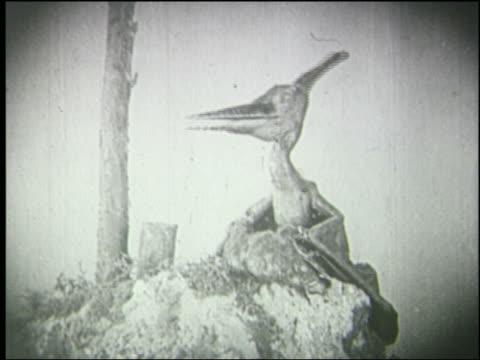 B/W pterodactyl eating animal in nest