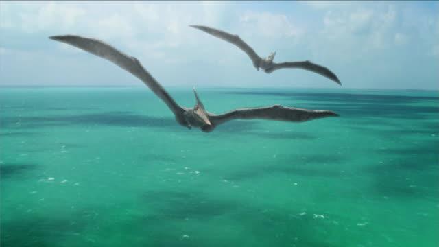 vídeos y material grabado en eventos de stock de a pterosaur circles above another pterosaur over a sea in a computer-generated animation. - meteorología