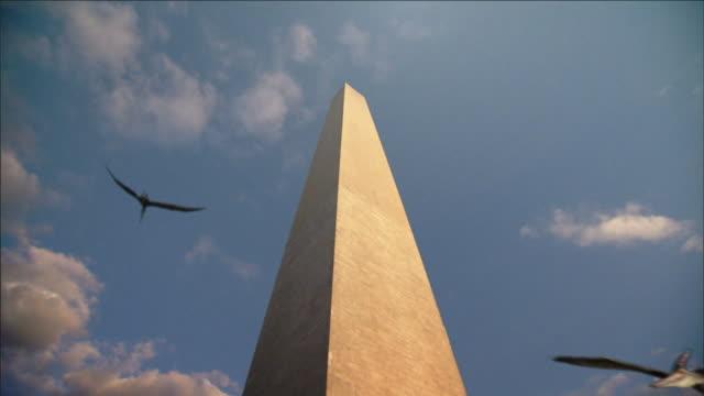 pterosaurs soar around washington monument in a computer-generated animation. - gliedmaßen körperteile stock-videos und b-roll-filmmaterial
