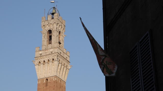 pubblico palace campanile, siena, tuscany, italy, europe - palazzo pubblico stock videos and b-roll footage