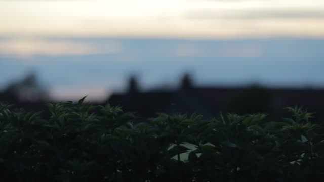 stockvideo's en b-roll-footage met public footpath, rowthorne village derbyshire, england, uk, europe - derbyshire