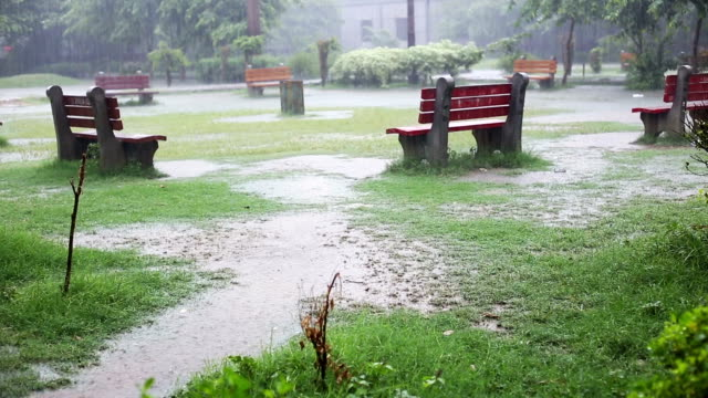 public park and torrential rain - torrential rain stock videos & royalty-free footage