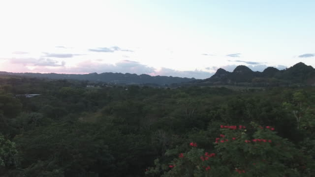 puerto rican mountains - exoticism stock videos & royalty-free footage