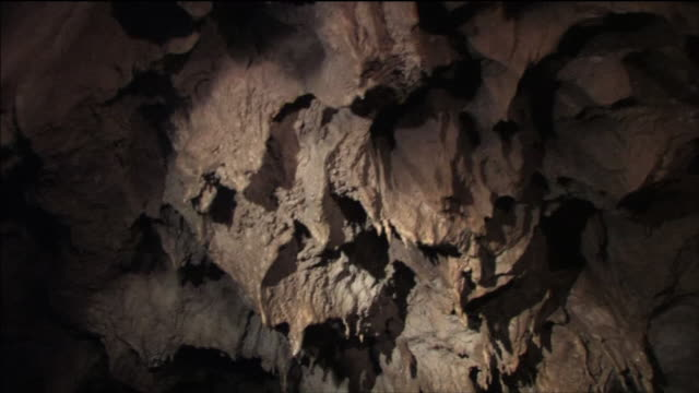 puertoprincesa subterranean river national park inside the limestone cave rocks of various shapes - 石灰岩点の映像素材/bロール