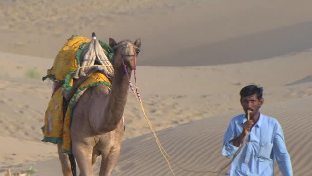stockvideo's en b-roll-footage met pull back shot desert camel ride jaisalmer rajasthan india - alleen één mid volwassen man
