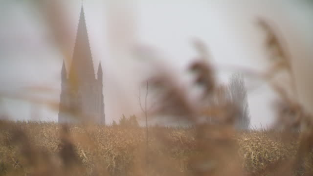 pull focus between wheat and a church steeple, northern france. - steeple stock videos & royalty-free footage