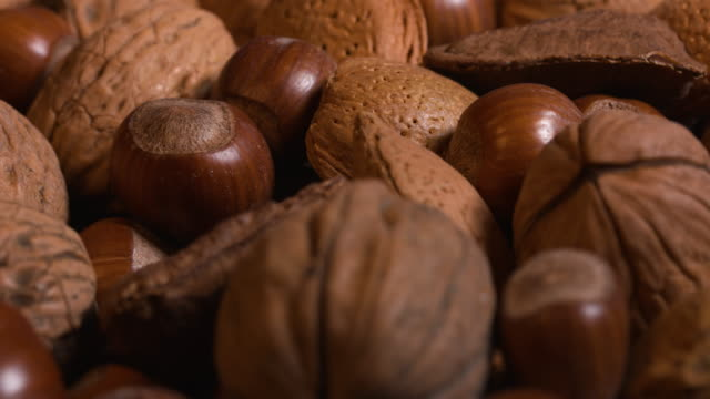 Pull focus close shot on hazelnuts, walnuts and almonds.