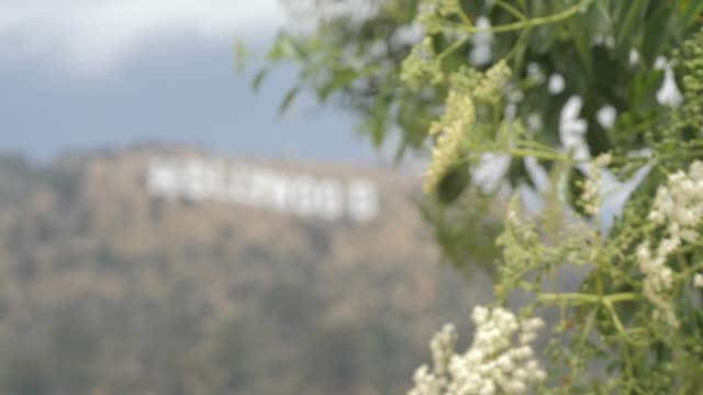 pull focus of hollywood sign in hollywood hills, hollywood, los angeles, california, united states of america, north america - hollywood sign stock videos & royalty-free footage