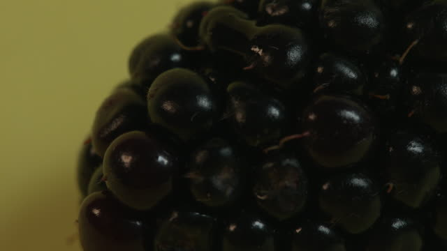 pull focus on a small rotting patch of a blackberry against a yellow background. - ascorbic acid stock videos & royalty-free footage
