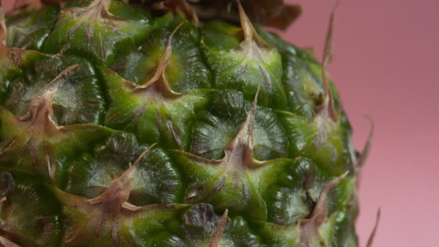 pull focus on the surface of a pineapple against a plain pink background. - appuntito video stock e b–roll