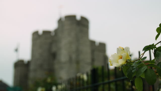 Pull focus onto a low-angle view of Canterbury's Westgate, Kent, UK.