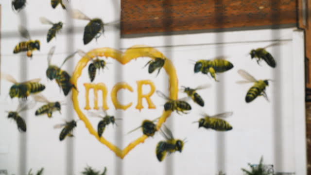 pull focus onto graffiti depicting a swarm of bees surrounding the letters 'mcr' in the northern quarter, manchester - manchester england stock videos & royalty-free footage