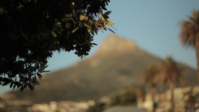 pull focus shot on lion's head mountain overlooking cape town. - lion's head mountain stock videos and b-roll footage