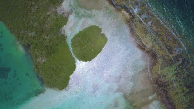 stockvideo's en b-roll-footage met optrekken luchtfoto van een mangrovebossen tussen cays en ondiepe turquoise wateren in de caribische zee. - hijsen