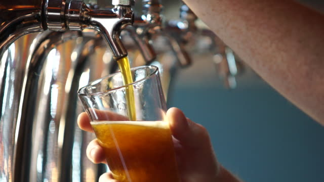 stockvideo's en b-roll-footage met pulling a glass of draft beer at a microbrewery - bier