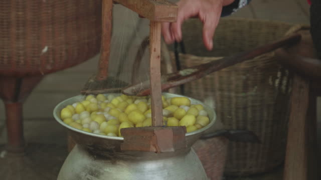 cu : pulling silk from cocoons silkworm - silk stock videos & royalty-free footage
