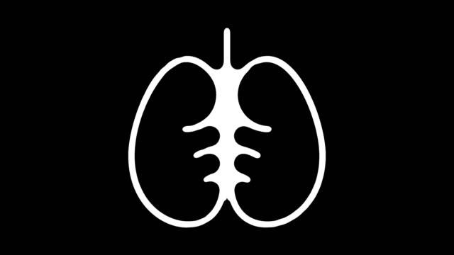 vidéos et rushes de fonction pulmonaire ligne icône animation avec alpha - artère pulmonaire