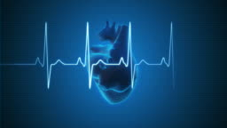 EKG Pulse Trace with Human Heart | Loopable