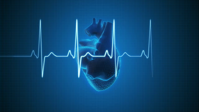 ekg pulse trace with human heart | loopable - pulsating stock videos & royalty-free footage