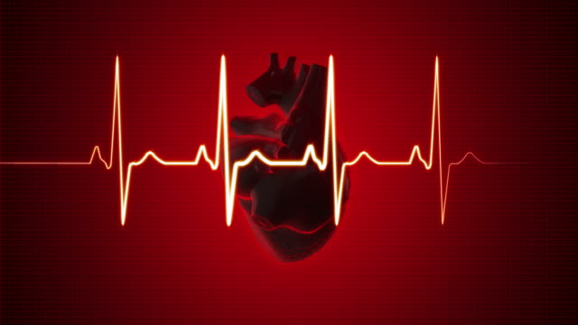 ekg pulse trace with human heart | loopable - heart stock videos & royalty-free footage