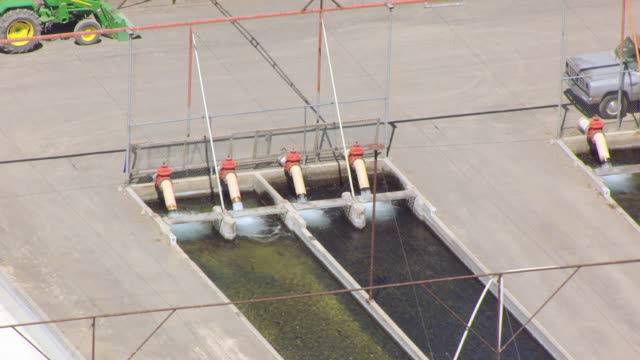 cu aerial zo pumps with national fish hatchery at snake river / idaho, united states - trout stock videos and b-roll footage